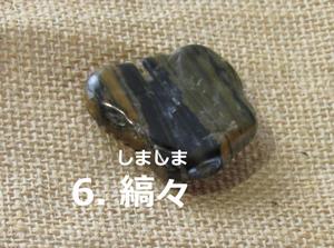 「6.しましま」の写真。黒と明るい茶色の縞模様。形は平たくいびつ。